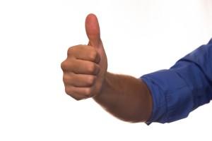 reviews fall into the positive column